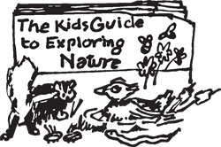 KIDS NATURE GUIDE BOOK